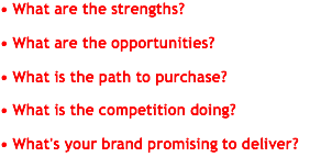 • What are the strengths? • What are the opportunities? • What is the path to purchase? • What is the competition doing? • What's your brand promising to deliver?