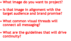 • What image do you want to project? • Is that image in alignment with the target audience and brand promise? • What common visual threads will connect all messaging? • What are the guidelines that will drive continuity?